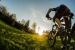 MT_rower.JPG