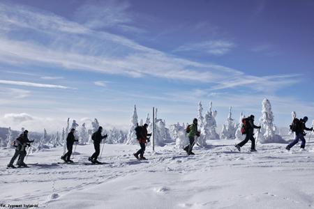 Zimowe atrakcje w Karkonoszach (fot. Karkonosze)