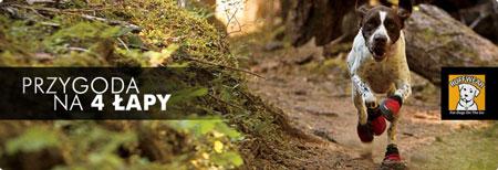 Sherpa.pl otwiera nowy dział w sklepie – Dog trekking