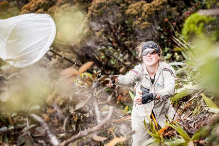 Wyprawa Tramén Tepui 2012 - poszukowanie nieodkrytych gatunków (fot. Marek Arcimowicz)