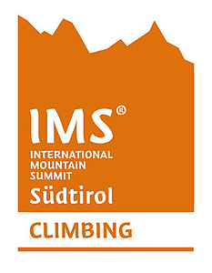 International Mountain Summit, logo