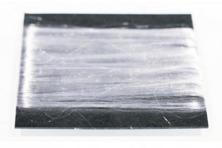 Toray, poliester pochodzenia roślinnego