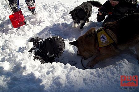 WinterCamp 2011, lawina