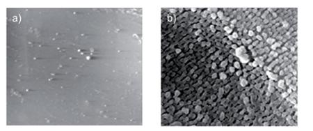 Zdjęcia SEM materiału fabrycznego (a) i z efektem Lotosu na powierzchni (b)