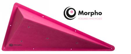 Morpho.png