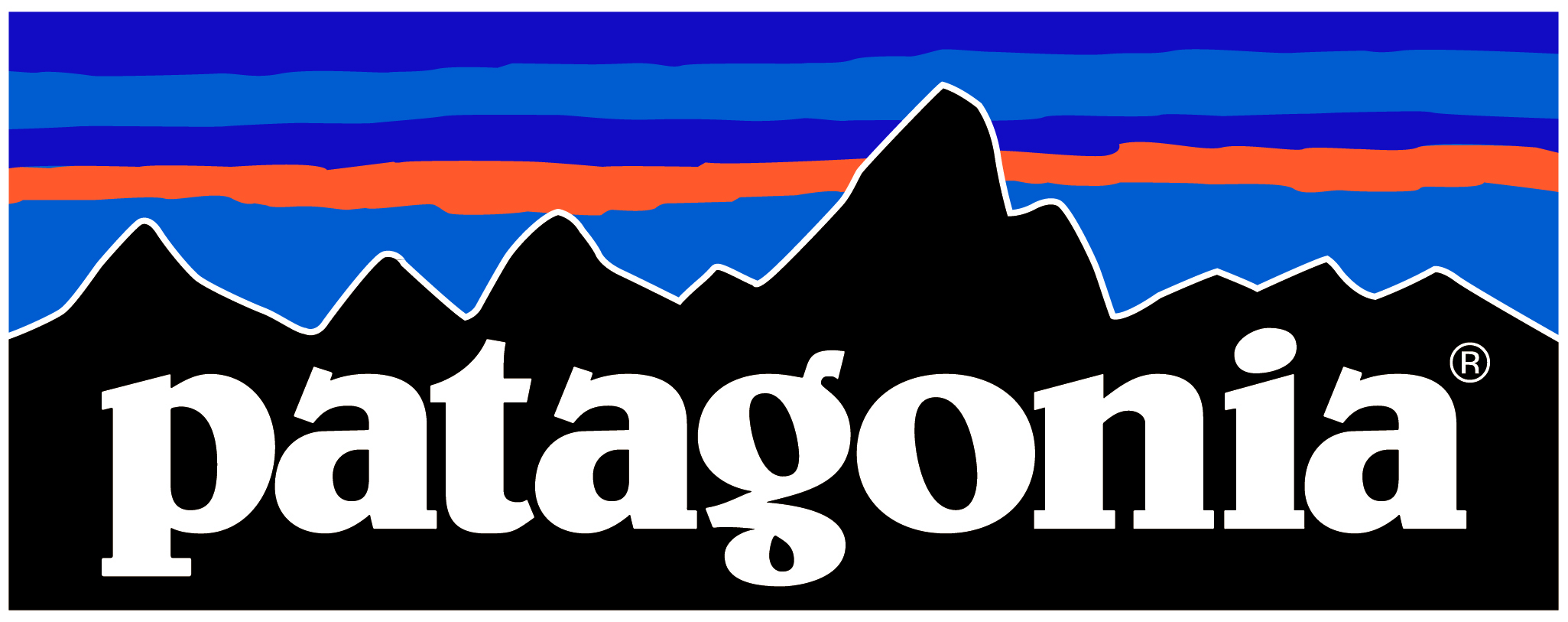 Patagonia nagrodzona w Davos