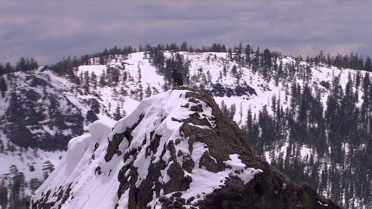 Wielkie narciarskie widowisko w Zakopanem